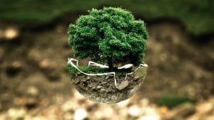 Bien-être et environnement les solutions
